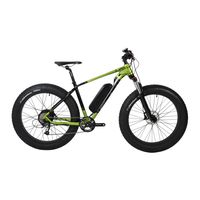 "26""4.0 Fat Tire Electric Bike"