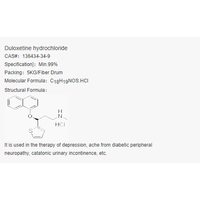 Duloxetine/DULOXETINE