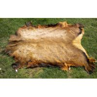 Quality Wet and Dry Salted Cow Hides