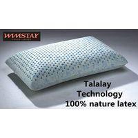 Talalay Technics Process 100% Nature Latex Foam Pillow Bamboo-Charcoal Pillow