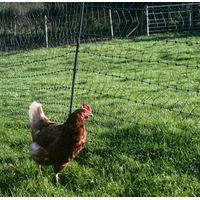 Plastic poultry farm chicken mesh /plastic breeding net