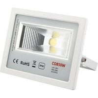 50W COB LED Flood Light (TLV-50WCOB)