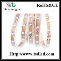 3528SMD LED Strip Light (Waterproof)