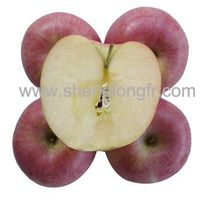 Qinguan Apple thumbnail image