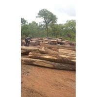 kosso wood thumbnail image