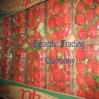 Best Fresh Strawberry European stander