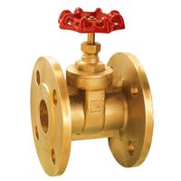J1008 Forged Brass Flanged Gate Valve