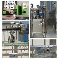 Fruit juice jam paste Aseptic Big Bag Filling Machine