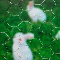 Electro Galvanized Hexagonal Wire Nettingchicken wire dog fence thumbnail image