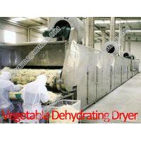 Vegetable Dehydrating Dryer thumbnail image