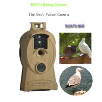 hottest selling bird watching binoculars telescope trail scouting game camera with 10MP images and 7 thumbnail image