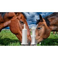 High Quality Equine Paste Syringes supplier&manufacturer