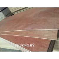 Sell Bintangor commercial plywood 4x8 cheap price
