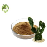 Cactus Extract for Weight Loss; Caralluma Fimbriata Extract Ratio 10/1 Extraction For Cosmetic Field