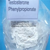 Testolent Human Phenylpropionate Steroid CAS 1255-49-8 Raw Powder Testosterone Phenylproprionate for