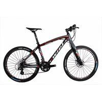 WIEL Carbon MTB Bicycle B083
