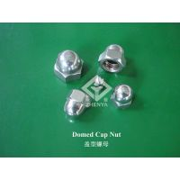 Domed Cap Nut thumbnail image
