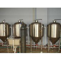 Experimental equipment of beer fermentation system thumbnail image