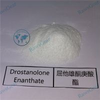 Drostanolone Enanthate / Masteron Enanthate Raw powder thumbnail image