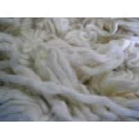 ROVING COTTON