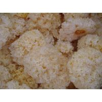 Dried White Fungus Whole/Slice