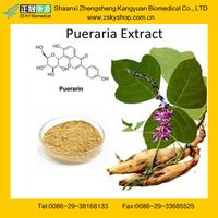 Natural Pueraria Extract from GMP Manufacturer