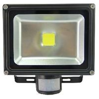 20W LED Portable Rechargeable Flood Light (PIR Control)