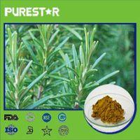 Rosemary Extract,Rosmarinic Acid