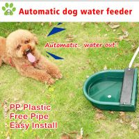 Automatic water bowl for animals, dog water bowl