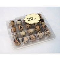 Plastic Tray For Quail Eggs 10, 20, 56 pcs