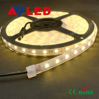 High Lumen Waterproof ip65 5050 flexible led strip 60led/m DC 12V
