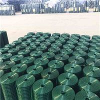Pvc Coated Welded Wire Mesh pvc coated wire mesh galvanized welded wire mesh panels thumbnail image
