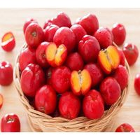 Organic Freeze Dried Acerola Cherry Powder