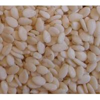 Sesame seeds, Moringa seeds, Sunflower Kernel,etc Avalable..