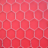 Hexagonal Wire Netting thumbnail image