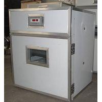 automatic egg incubator