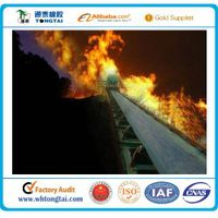 Tongtai Brand Heat Resistant Conveyor Belt
