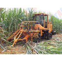 Saving cost hydraulic system mini sugar cane stalk cutting machine price SH15