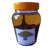 Truffle slices in olive oil, 300 ml each bottle packing