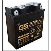 GT5E (Maintenance Free Battery - Sealed Type)