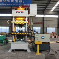 315 ton hydraulic press animal salt block press machine for 2kg 3kg 5kg licking salt blocks