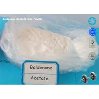 Boldenone Acetate CAS 2363-59-9 Muscle Gain Boldenone Steroids Hormone Powder Pharmaceutical Raw Ma