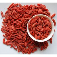 Dried Goji berry Powder Extract