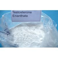 High purity above 98.5% test enanthate fitness bodybuilding booster steroids powder with best price
