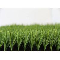 Football Grass TG310