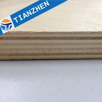 CE&FSC commercial plywood/ best quality plywood from China