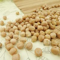 100% Natural Macadamia nuts/kernel - raw and roasted