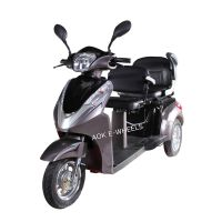 500W/700W Two Seat Electric Tricycle with Deluxe Saddle (TC-022B)