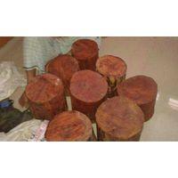 Red sandal wood