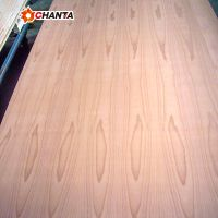 Factory direct 12202440 beech wood veneer fancy plywood with best price for south america
